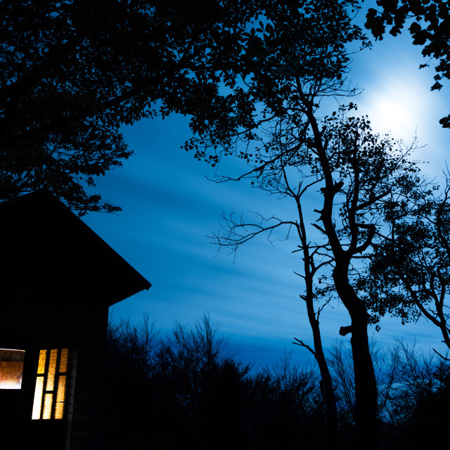 """""""Cabin in the Woods lit with Moonlight"""" stock image"""