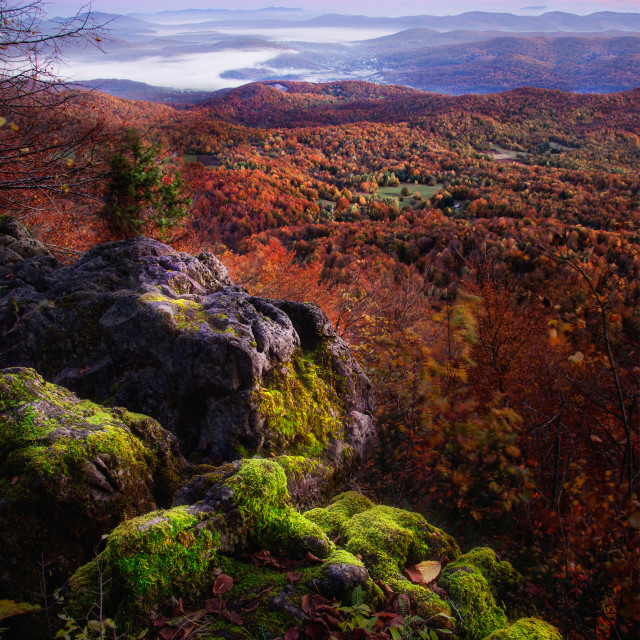 """""""A View on the Valley from top of the Mountain"""" stock image"""
