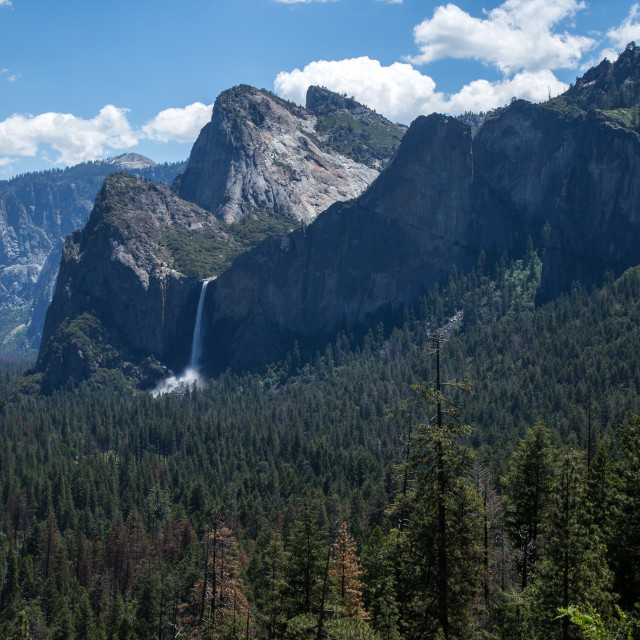 """Magnificent Yosemite"" stock image"
