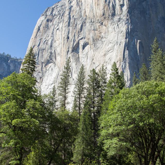 """Half dome at Yosemite"" stock image"