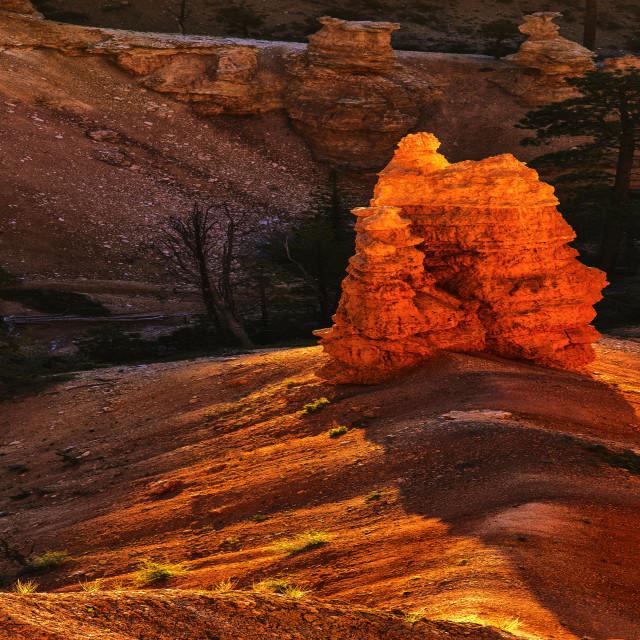 """Bryce Canyon 48"" stock image"
