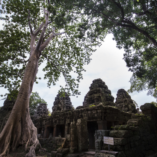 """The World Heritage Site Angkor Wat Temple"" stock image"