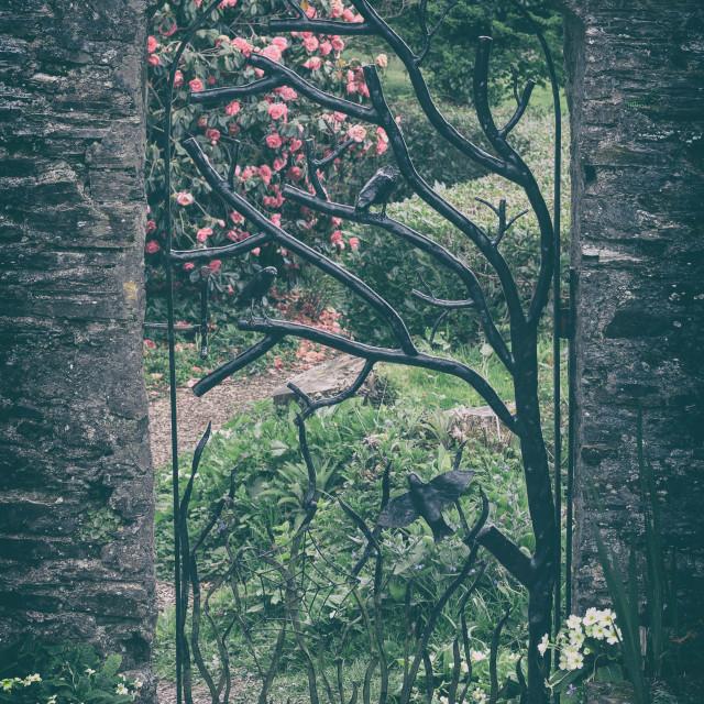"""""""Secret Garden, Secret Door"""" stock image"""