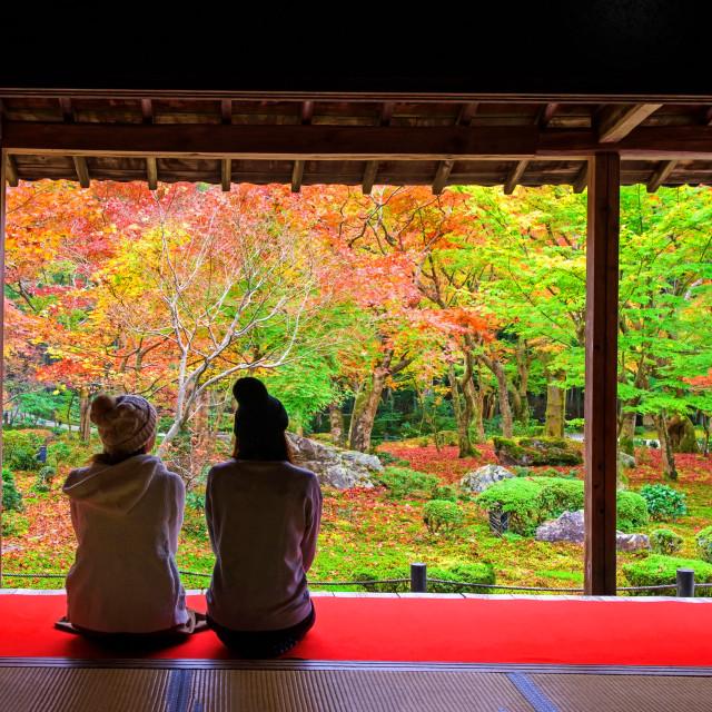 """Japanese girls in Enkoji temple enjoy Autumn colorful garden"" stock image"