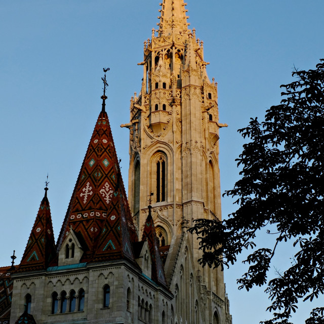 """Matthias Church"" stock image"