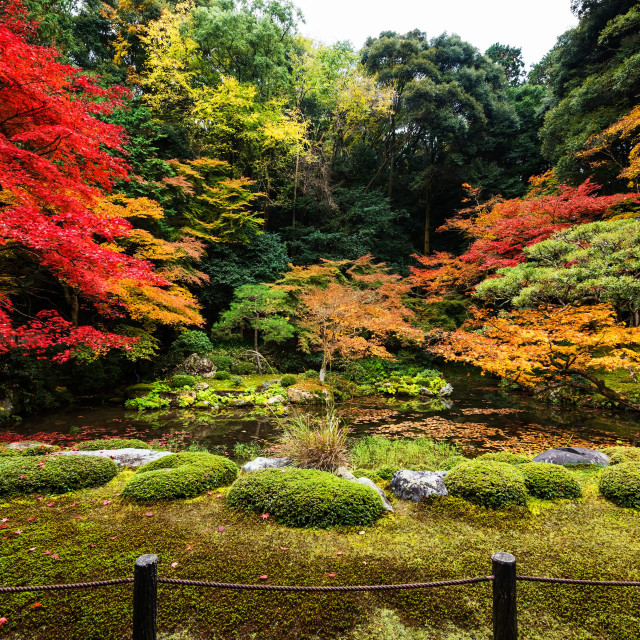 """Autumn garden at Nanzen-ji, Kyoto"" stock image"