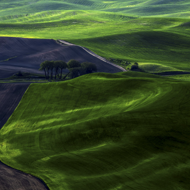 """Landscape 29"" stock image"