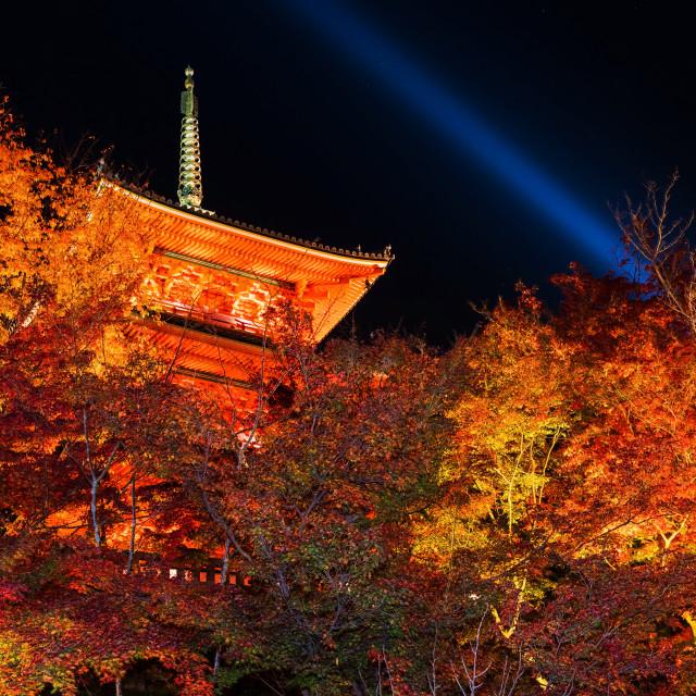 """Kiyomizu-dera autumn light up, Kyoto"" stock image"