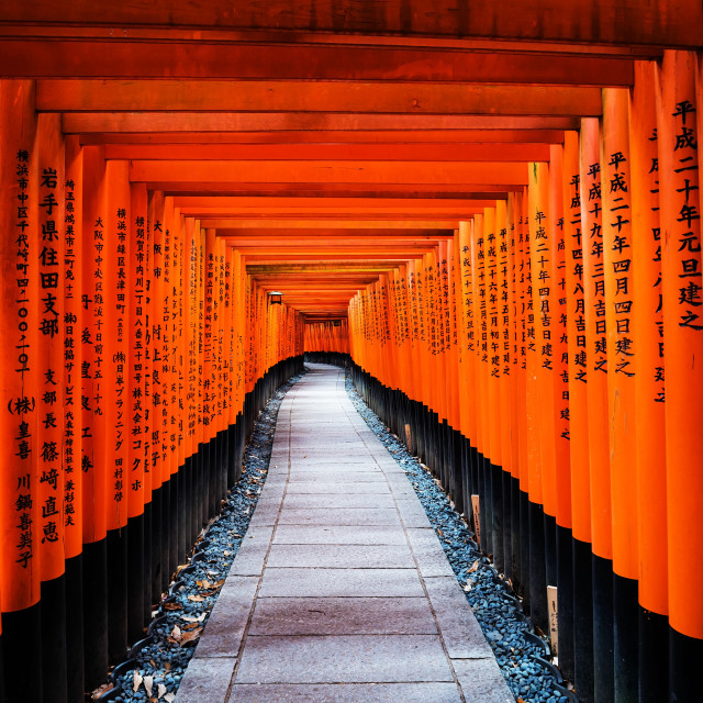 """Torii gates at Fushimi Inari, Kyoto"" stock image"