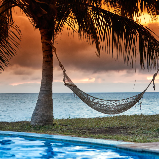 """Hammock in front of palm trees and sea"" stock image"