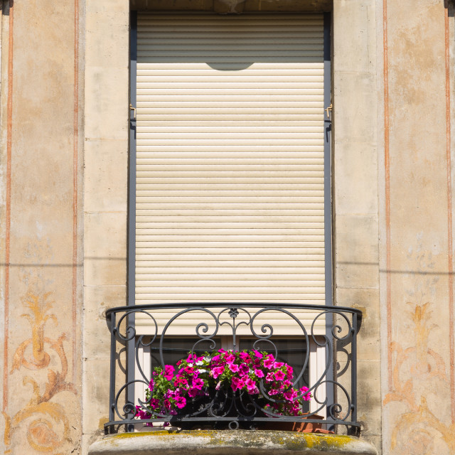 """""""Window and flowers"""" stock image"""