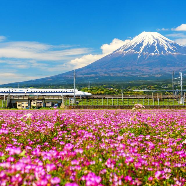 """Shinkanzen or Bullet train with Mt. Fuji"" stock image"