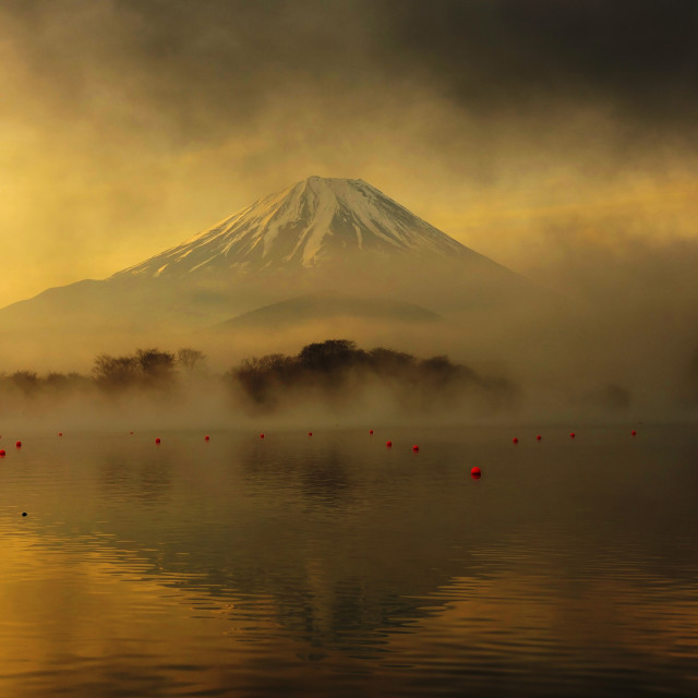 """Mount Fuji at sunrise in Lake Shoji"" stock image"