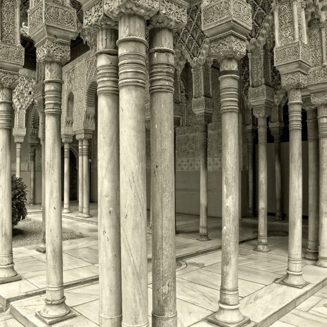 """Court of the Lions - Alhambra palace, Granada, Spain"" stock image"
