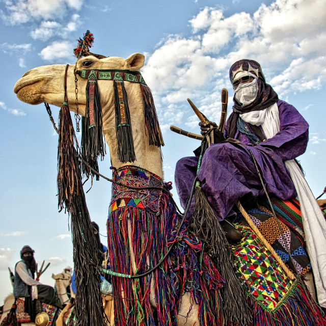 """Touareg on camel; Sahara Desert, Niger, West Africa"" stock image"