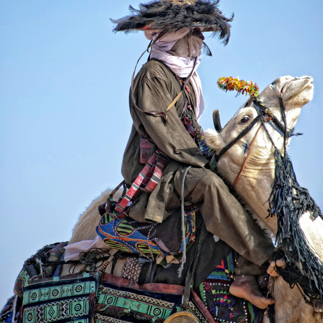 """Peul on camel, Niger, West Africa"" stock image"
