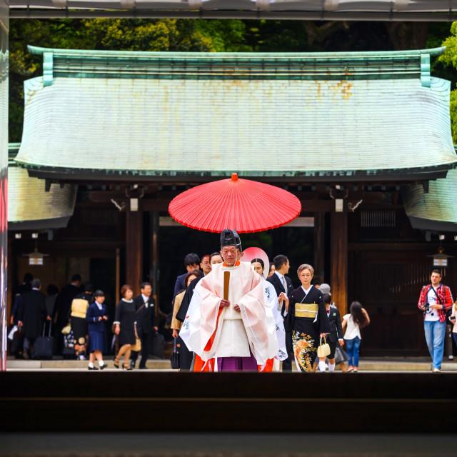 """Shinto wedding at Meiji Shrine, Tokyo"" stock image"