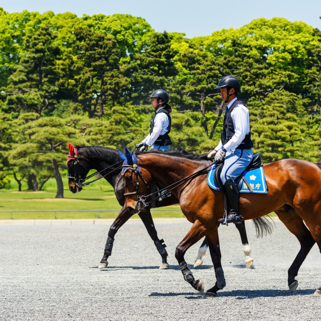 """police ride horses in Imperial palace, Tokyo"" stock image"