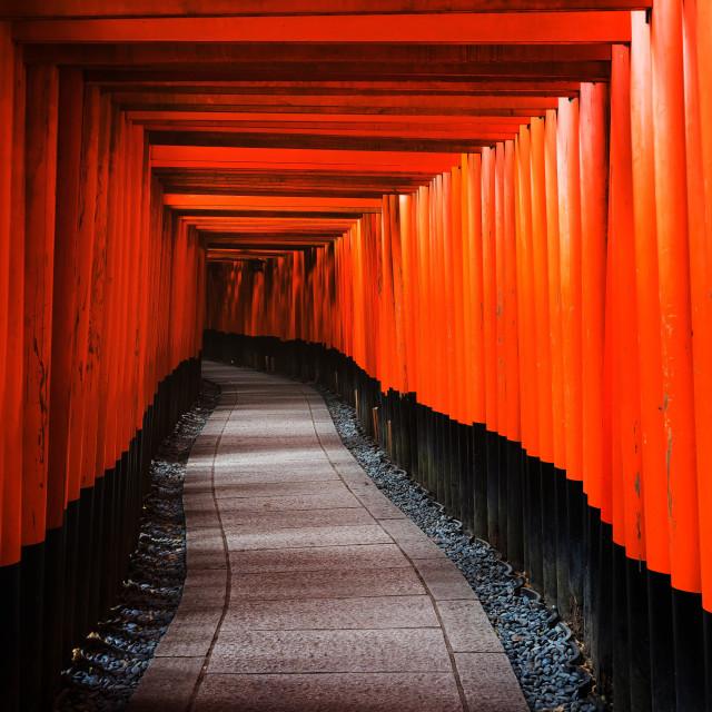"""Tori Gates in Fushimi Inari, Kyoto"" stock image"
