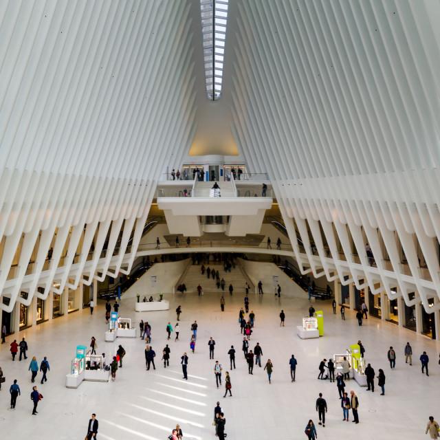 """""""World Trade Center Transportation hub interior"""" stock image"""