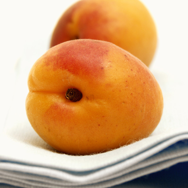 """""""Two apricots on cloth"""" stock image"""