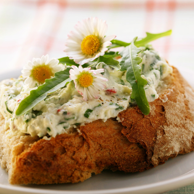 """""""Open sandwich with quark with rocket and daisies"""" stock image"""