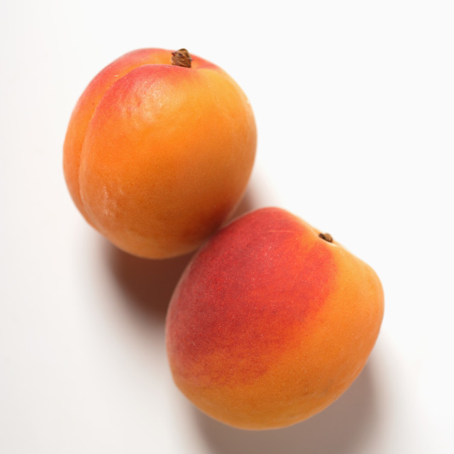 """""""Two apricots"""" stock image"""