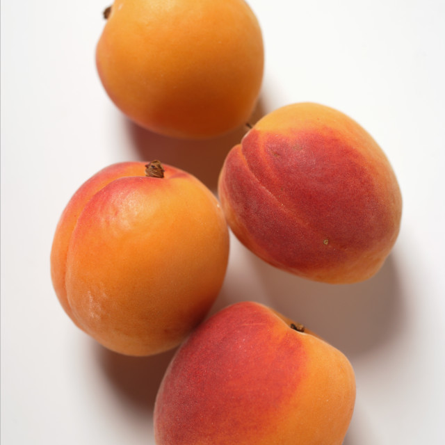 """""""Four apricots"""" stock image"""