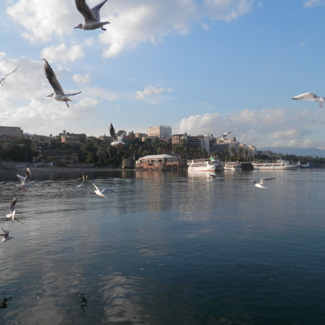 """Harbour on the Other Side of the Sea of Galilee"" stock image"