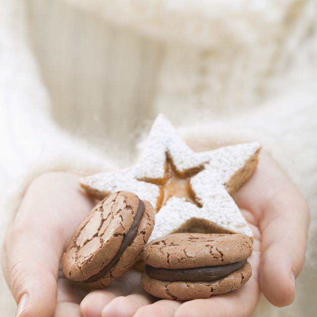 """Hands holding Christmas biscuits"" stock image"