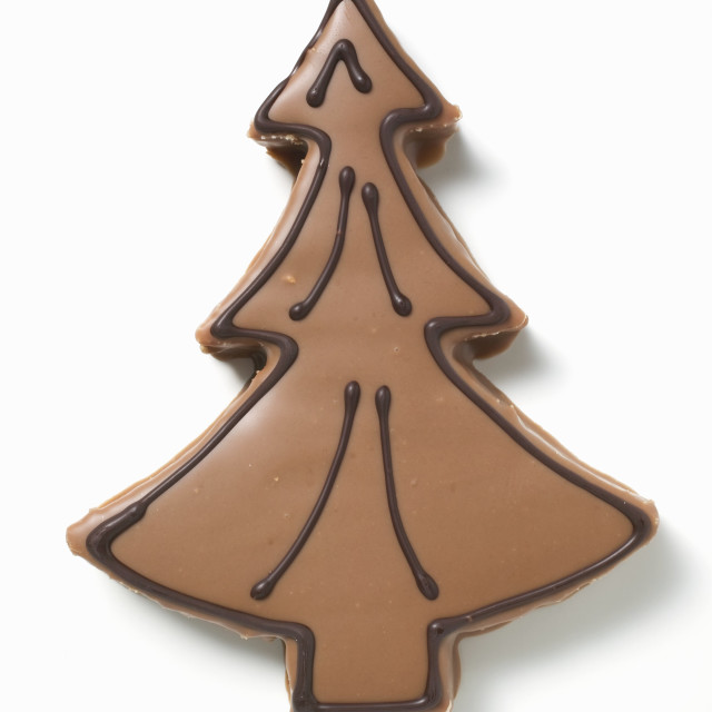 """Fir tree biscuit with chocolate icing"" stock image"