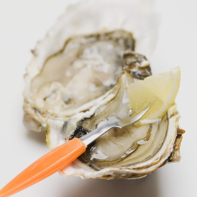"""Fresh oyster with fork and lemon"" stock image"
