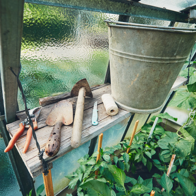 """Gardening Hand Trowel, small hoe, metal bucket and other tools on the shelf inside the greenhouse."" stock image"