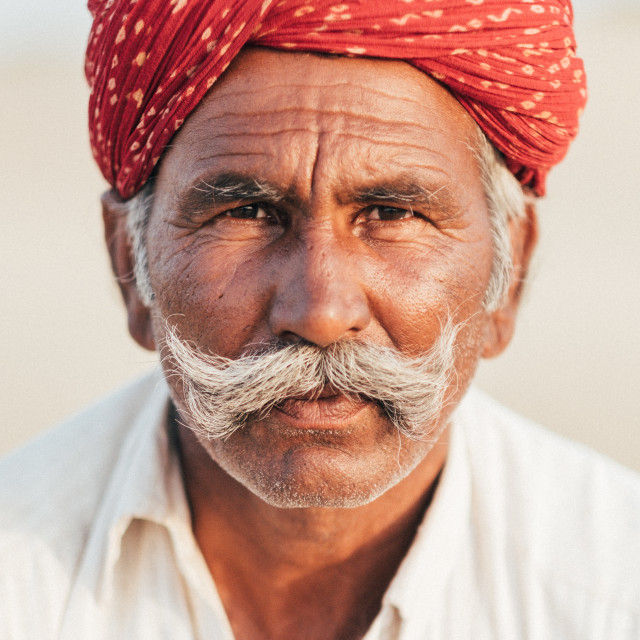 """""""Portrait of a Camel Driver"""" stock image"""
