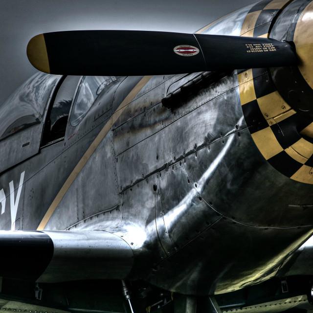 """""""P-51"""" stock image"""