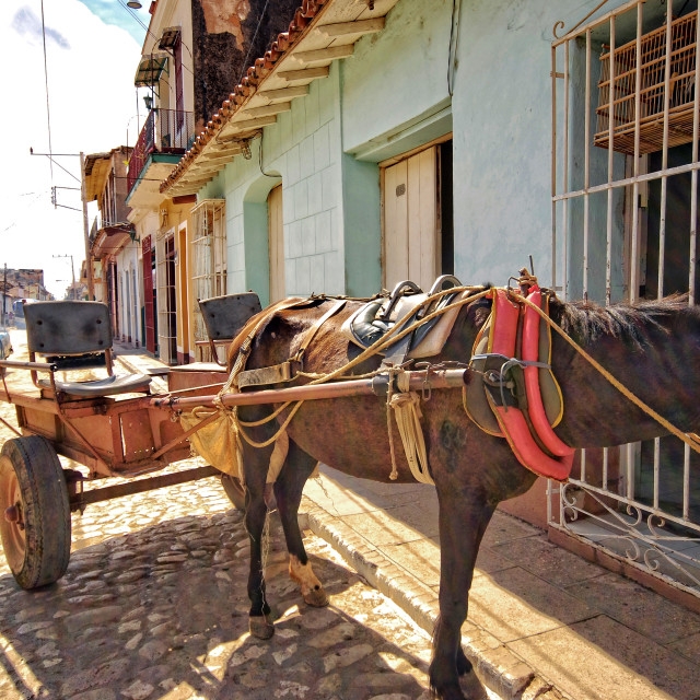 """Horse & cart; Trinidad; Cuba"" stock image"