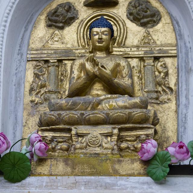 """""""Buddha in Abhaya Mudra"""" stock image"""