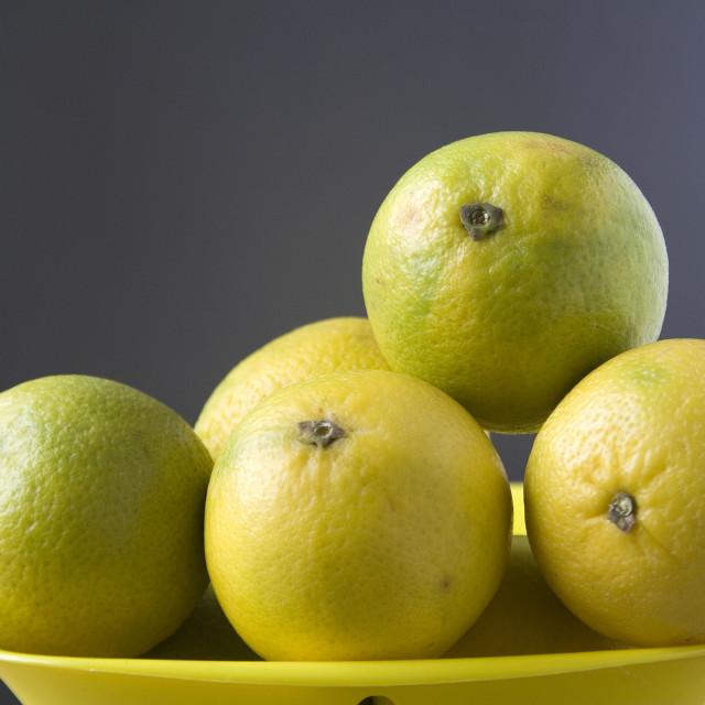 """Healthful Sweet Lemons"" stock image"