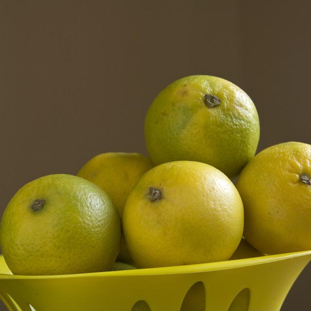 """Sweet Lemons"" stock image"