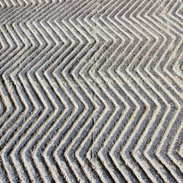 """Anti-skid, Zigzag Concrete Path"" stock image"