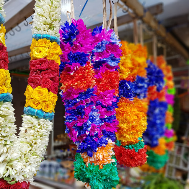 """Beautiful Garlands"" stock image"