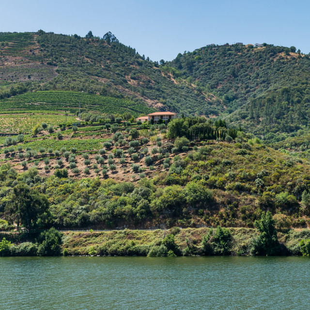 """View of Douro Valley, Portugal."" stock image"