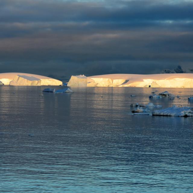 """Icebergs illuminated at dusk in Antarctica"" stock image"