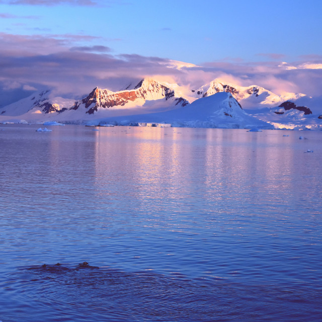 """Sunset in Antarctica"" stock image"