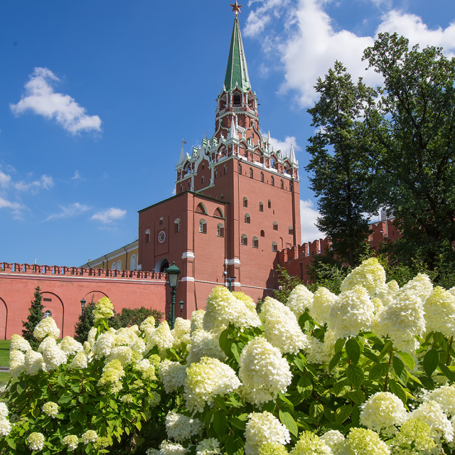 """""""Moscow Kremlin Tower"""" stock image"""