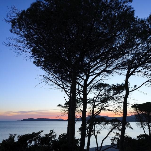 """Sunset in Sardinia."" stock image"