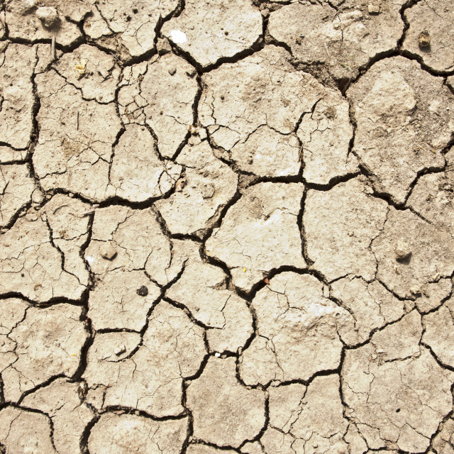 """Dry earth; Niger"" stock image"