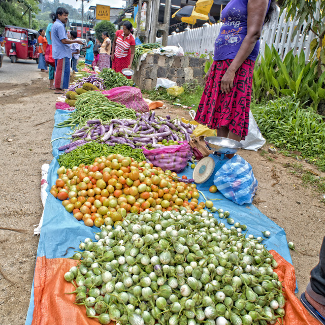 """Market in Ella; Sri Lanka"" stock image"