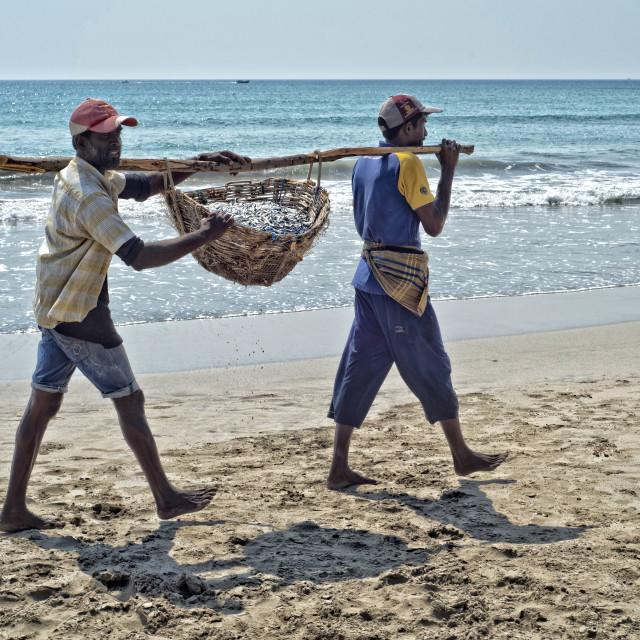 """Fishermen; Uppuveli, Sri Lanka"" stock image"