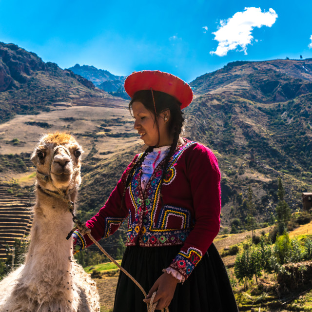 """""""Native Peruvian girl with her Lama in Sacred Valley, Cusco, Perl"""" stock image"""